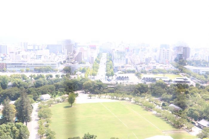 世界遺産と動物園をセットで満喫!子ども連れで姫路城と姫路市立動物園めぐりの画像8