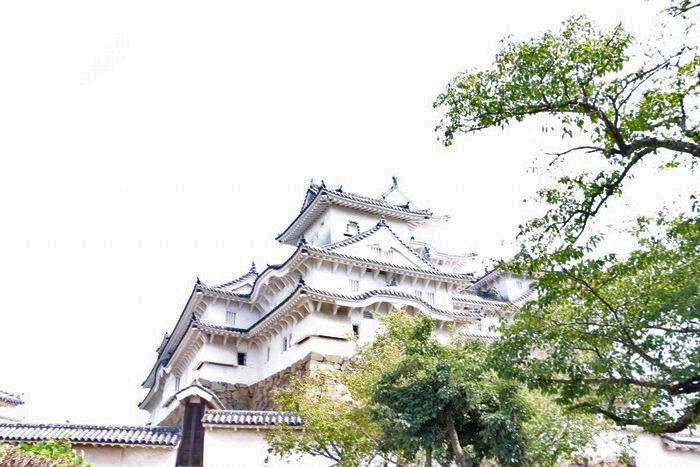 世界遺産と動物園をセットで満喫!子ども連れで姫路城と姫路市立動物園めぐりの画像4