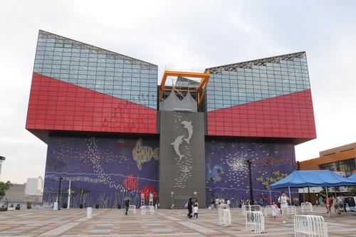 世界最大級の水族館!関西の人気おでかけスポット「海遊館」のタイトル画像
