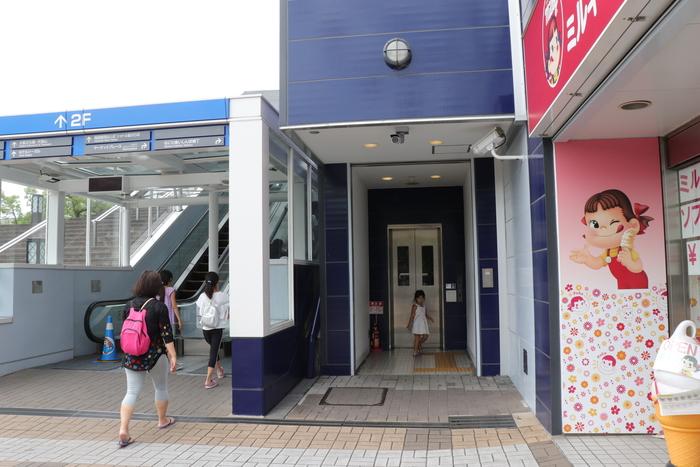世界最大級の水族館!関西の人気おでかけスポット「海遊館」の画像2