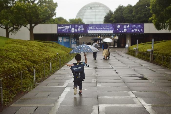 水族館デビューにおすすめ!手頃な入館料もうれしい「葛西臨海水族園」の画像2