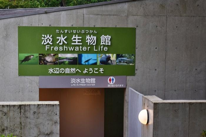 水族館デビューにおすすめ!手頃な入館料もうれしい「葛西臨海水族園」の画像18