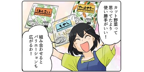 罪悪感は不要!料理のバリエーションが広がる「カット野菜」活用のススメのタイトル画像