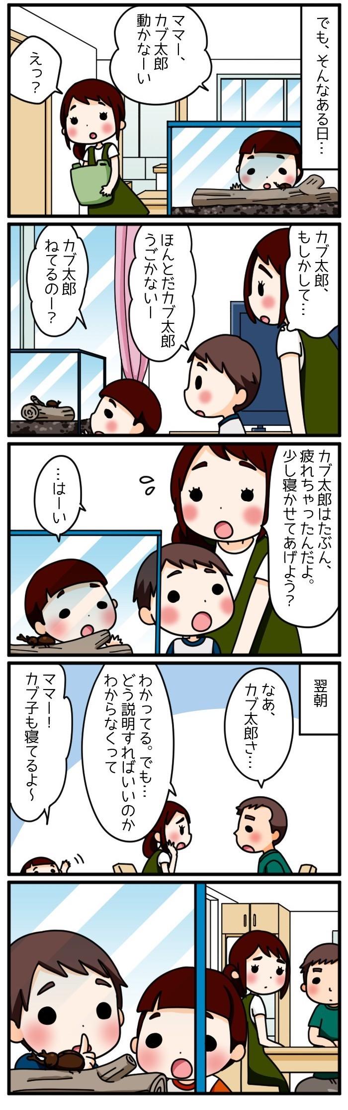 息子はワクワク、ママはドキドキ…!家族でカブトムシを育てた思い出の画像4