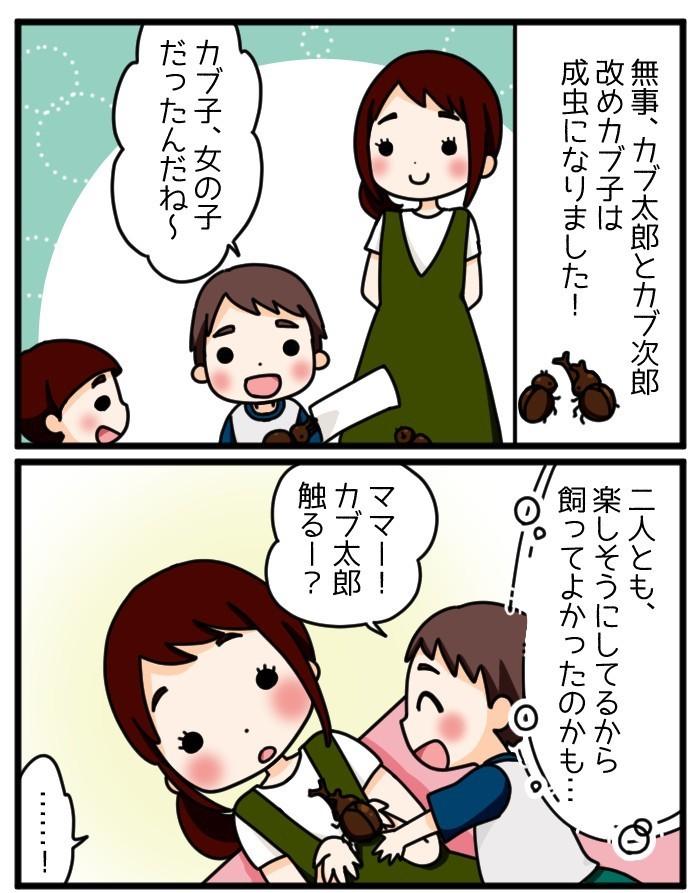息子はワクワク、ママはドキドキ…!家族でカブトムシを育てた思い出の画像3