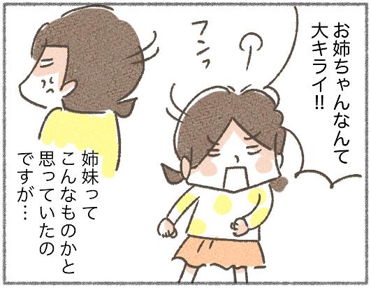 姉妹でケンカばかりの次女が、まさかの一言…。嬉しくて、思わず涙がホロリ。の画像4