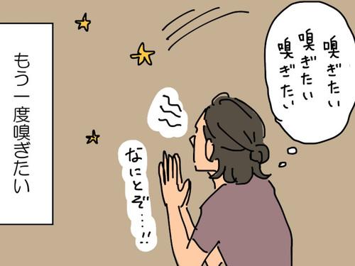 流れ星よ、願いを叶えておくれ!母を虜にする「あの匂い」をもう一度…!!のタイトル画像