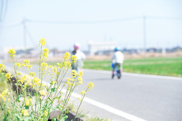 自転車にのった姿に、数えきれない君の「はじめて」を思い出した<第三回投稿コンテスト NO.112>の画像2