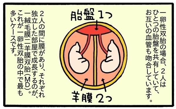 「普通」「平等」って何だろう…?双子妊娠、出産、育児のリアルを描いた新連載!の画像6