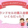 「10万円以上」が3%も!ランドセルの一番人気の価格帯は?のタイトル画像