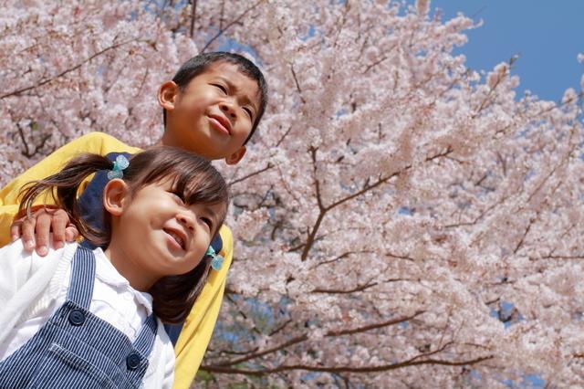 「3学年差」といえば入園入学のかぶり!憂鬱な心配が大号泣につながった春。の画像3
