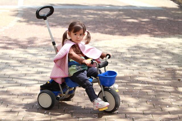 【2020年最新版】三輪車おすすめ10選!何歳から乗る?種類や選び方は?の画像2