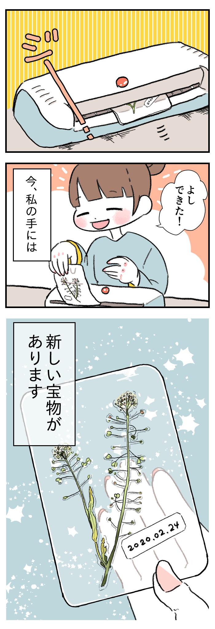 その気持ちと成長がとてもまぶしいから、キミのくれた雑草はママの一生の宝物の画像1