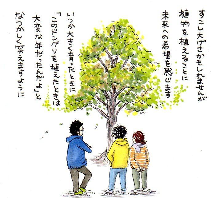 息子と植えたドングリ。新しい種は、いつかくる未来への希望。今を懐かしむ時が、きっと来る。の画像12