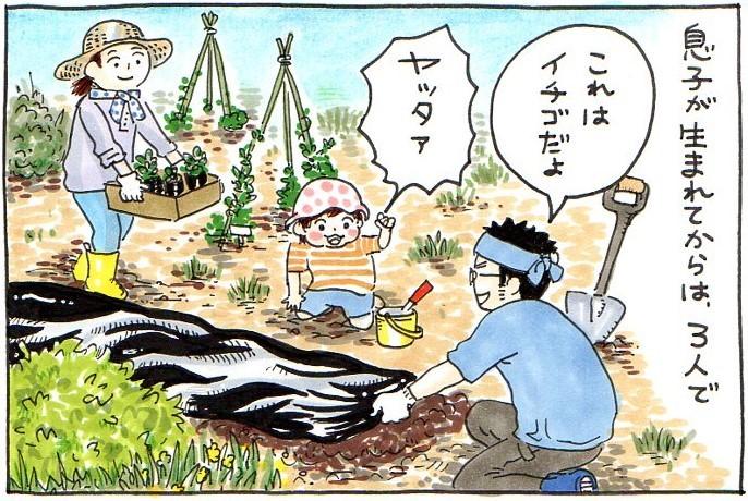 息子と植えたドングリ。新しい種は、いつかくる未来への希望。今を懐かしむ時が、きっと来る。の画像2
