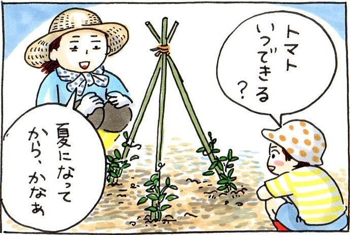 息子と植えたドングリ。新しい種は、いつかくる未来への希望。今を懐かしむ時が、きっと来る。の画像3