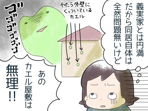 """同居予定の義実家に、苦手なカエルが大量発生!""""共存""""に向けた試行錯誤の結末の画像4"""