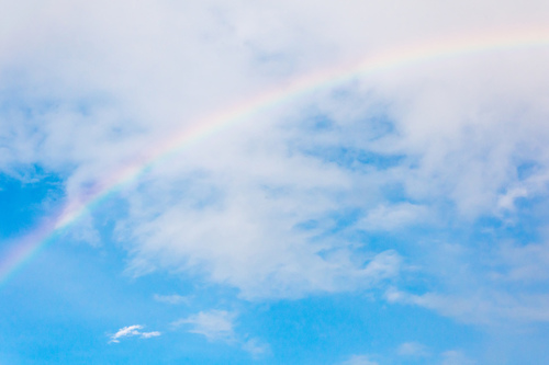 「心で覚えてるの」スマホで撮り逃した大きな虹と、消えない記憶のタイトル画像