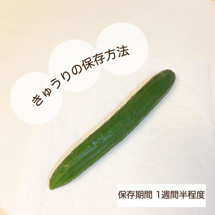 あれもこれも野菜室でシナ〜ッ…。そんなあるあるから脱却!保存方法まとめの画像12