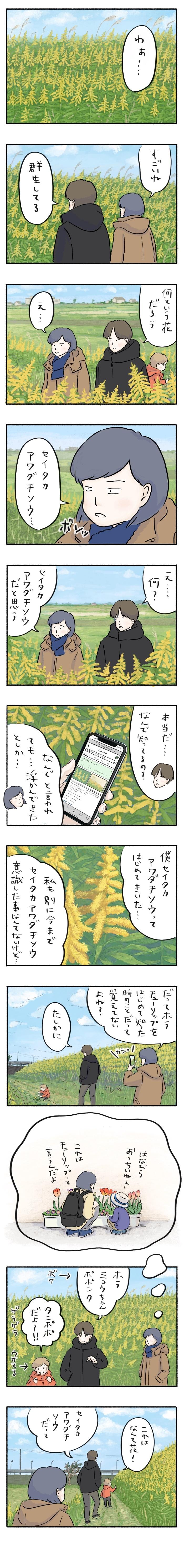 「あ、この野草の名前知ってる」幼い頃の記憶は、心に淡々と刻まれるの画像1