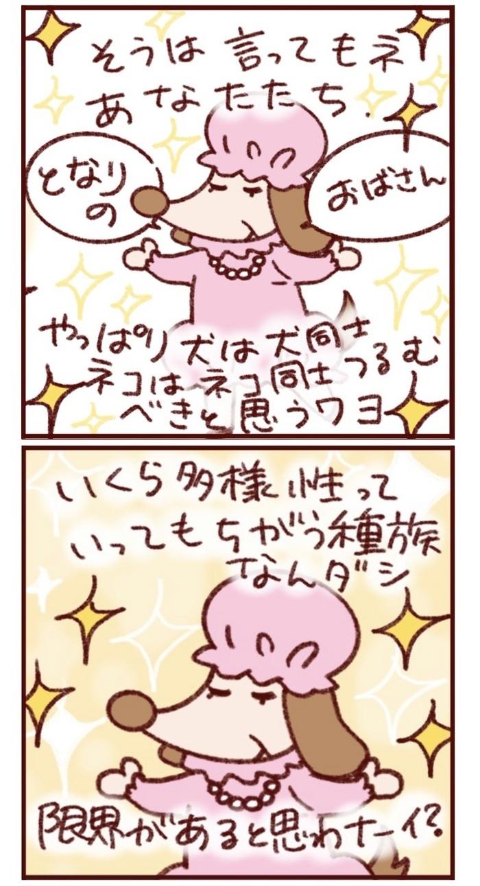 """""""違う""""夫婦の楽しい毎日。「ネーコとイーヌ」連載ダイジェスト&今後をチラ見せ!の画像6"""