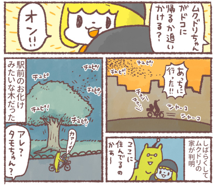幼児とネコが、血相を変えてダッシュ!1人と1匹がそろって狙うアレの画像12