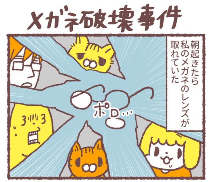 幼児とネコが、血相を変えてダッシュ!1人と1匹がそろって狙うアレの画像8