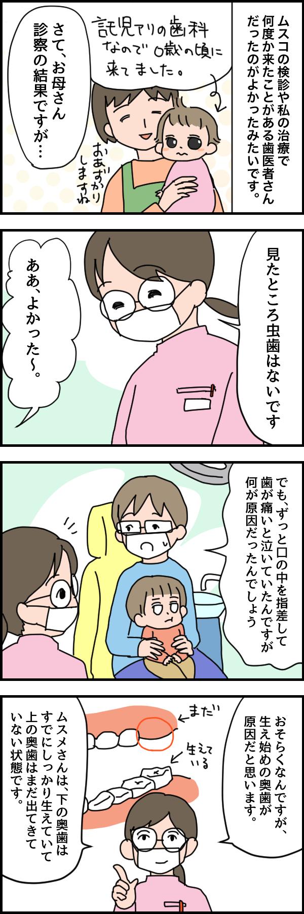 幼児の「歯が痛い!」はこんな原因でも起きる!ビックリ歯医者デビューの画像3