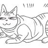 気づけば、猫の着こなしが日に日にグレードアップしているのタイトル画像