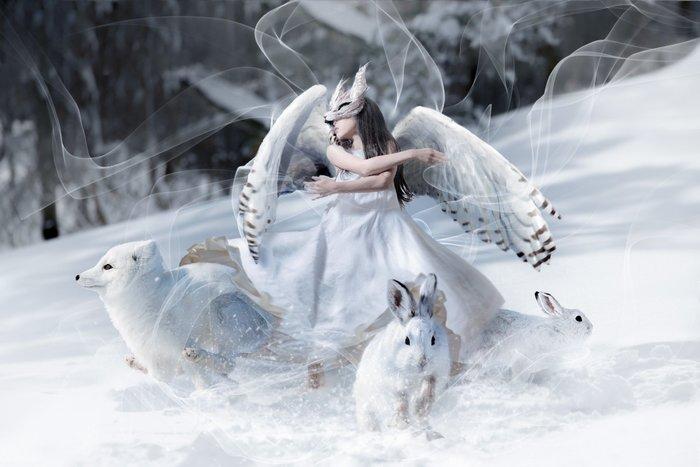 まるで雪の中で舞う女王…。パパが手がけた娘の写真が素敵すぎる!!の画像3