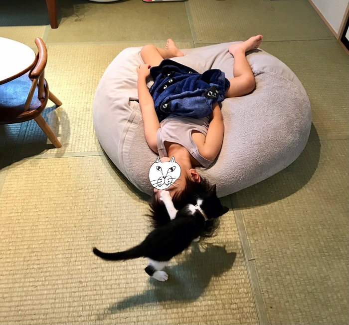 熟睡中の男の子。新入り猫の起こし方が容赦ないけどほっこりしちゃうの画像3