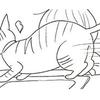 遊んで欲しい猫VSパズルをしたい子ども。仁義なき戦い!!のタイトル画像