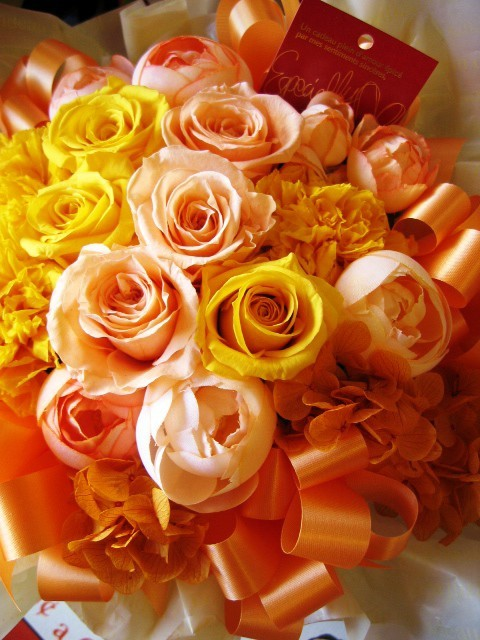 orange831414の画像